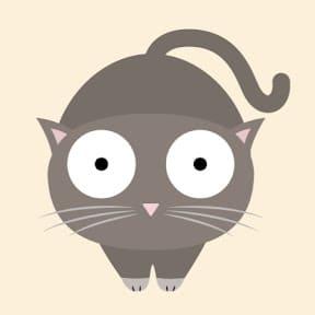 Photo de La statistique expliquée à mon chat